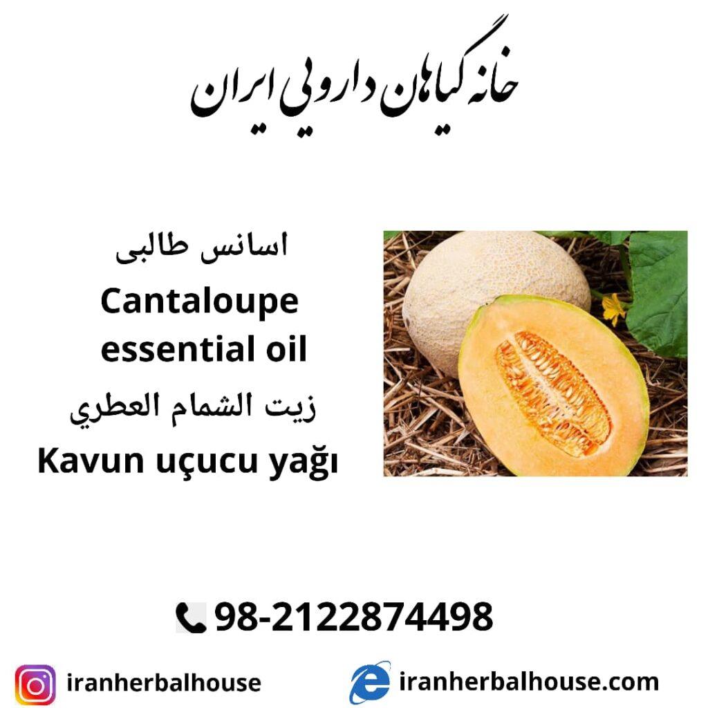 cantaloupe essential oil