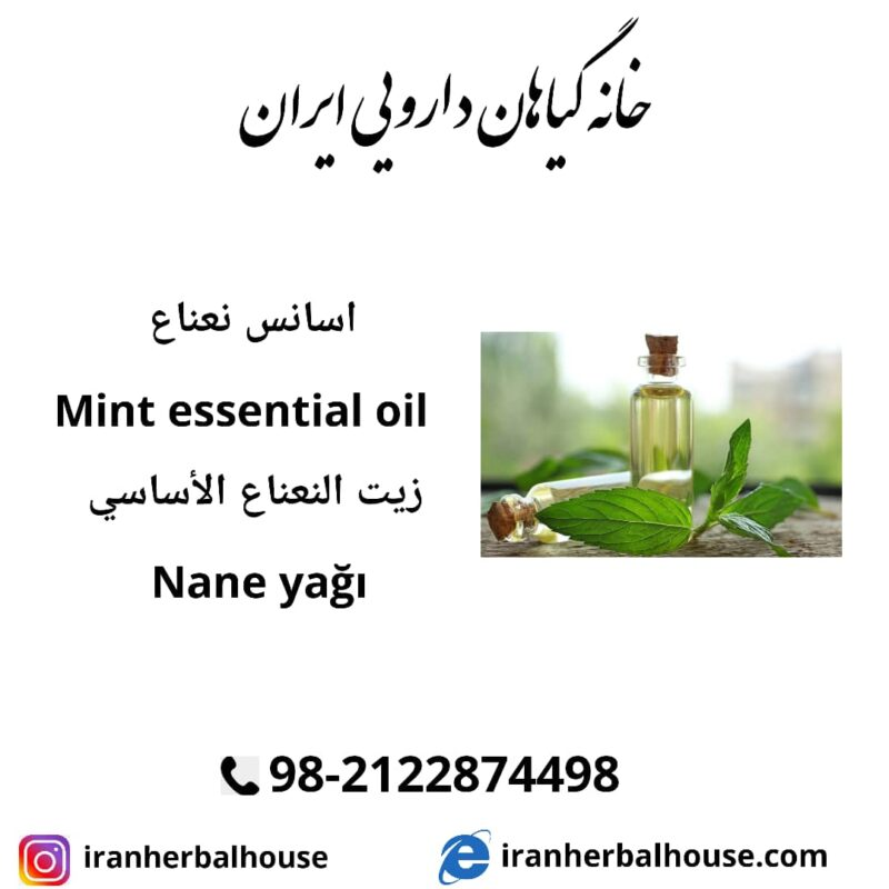 mint essential oil