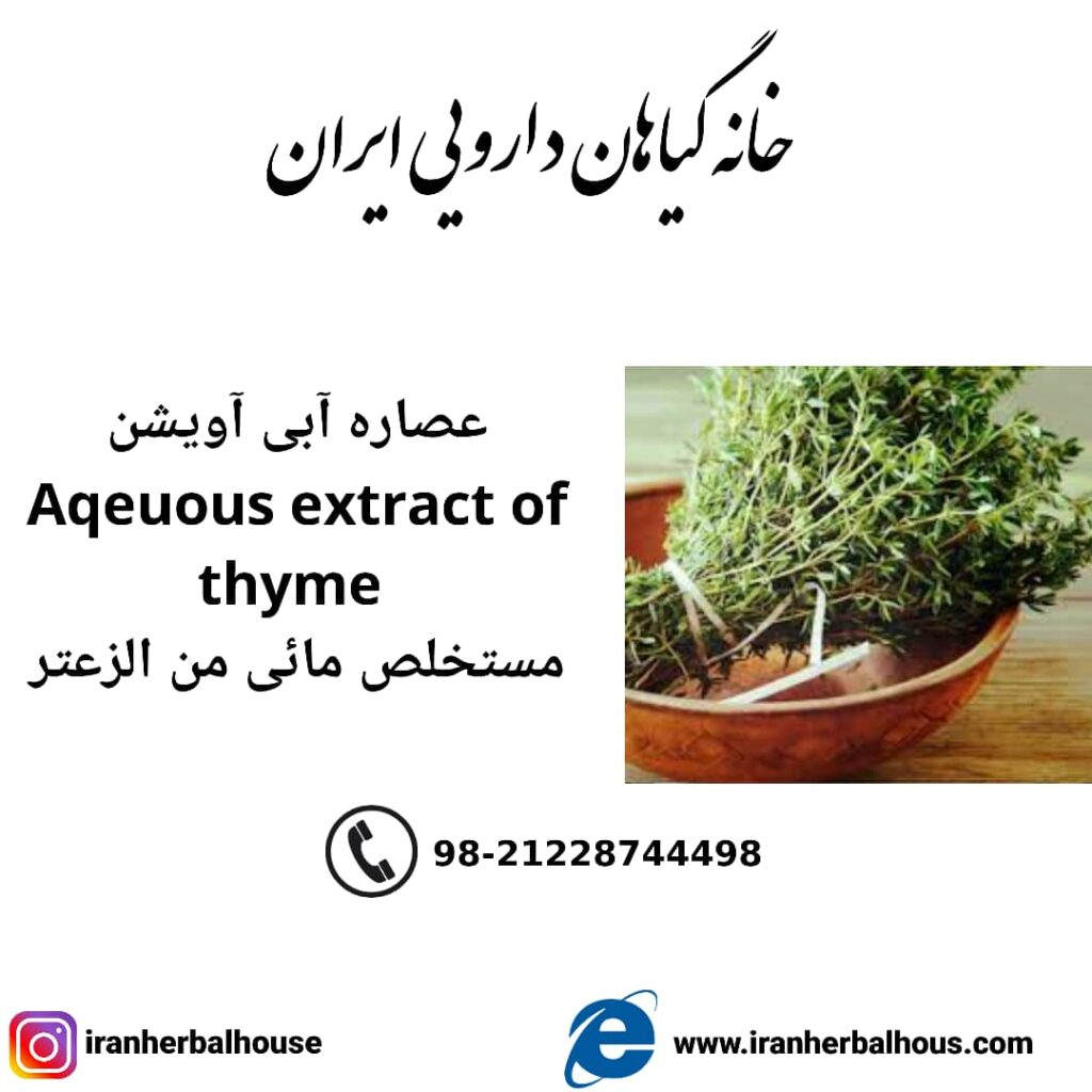 Aqeuous Extract of thyme