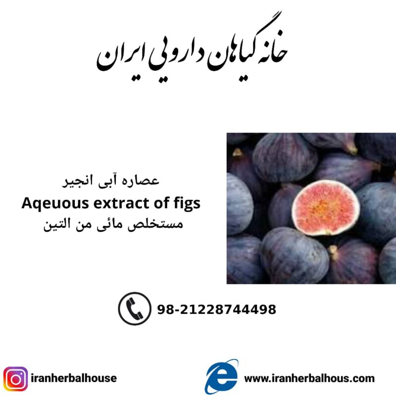 Aqeuous Extract of figs