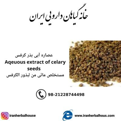 Aqeuous Extract of celary seeds
