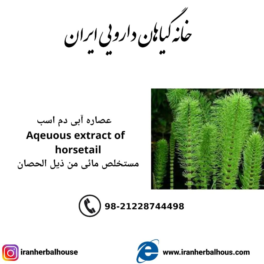 Aqeuous Extract of horsetail