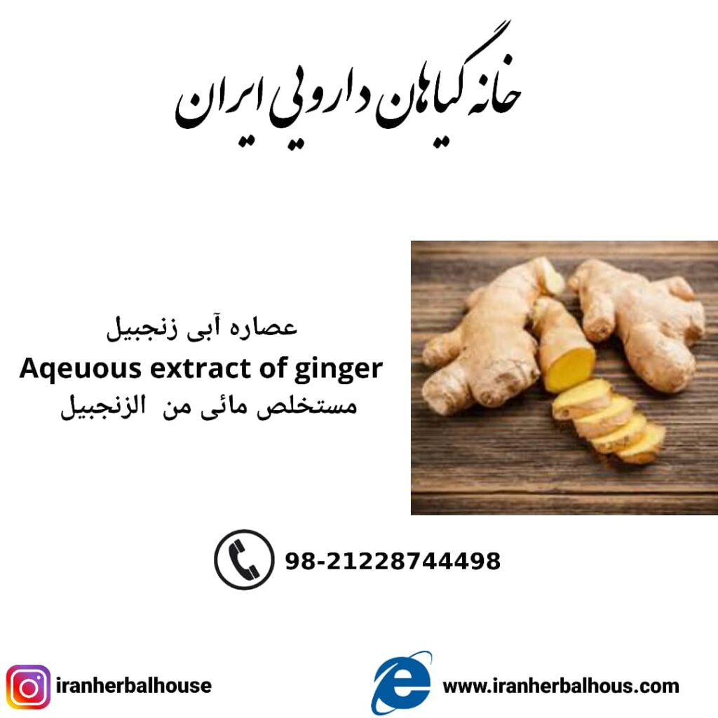 Aqeuous Extract of ginger