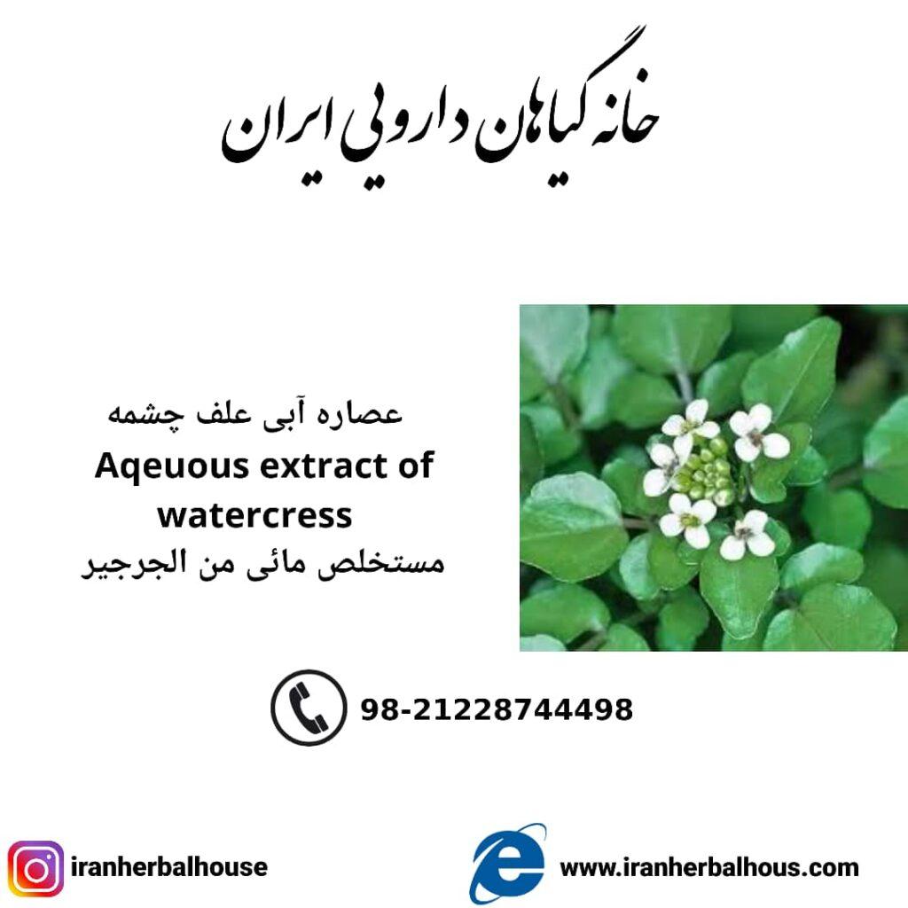 Aqeuous Extract of watercress