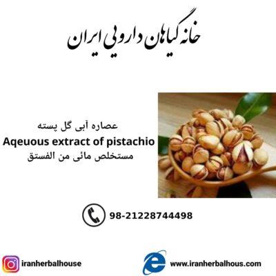 Aqeuous Extract of pistachio