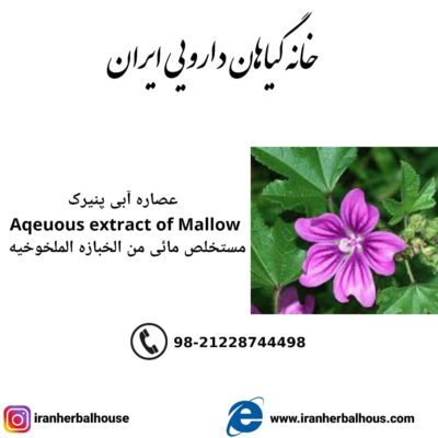 Aqeuous Extract of mallow