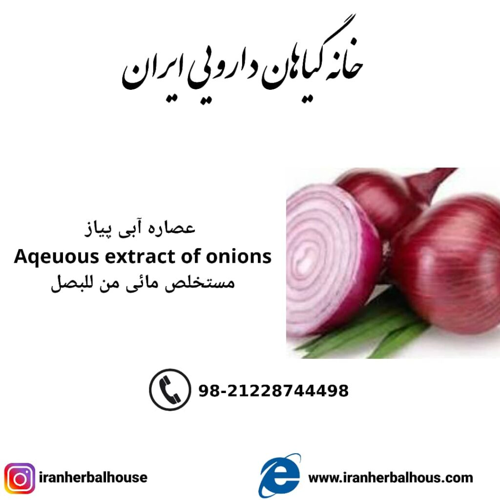 Aqeuous Extract of onion
