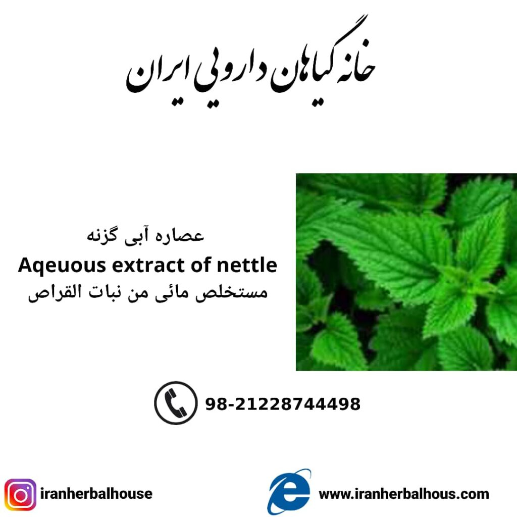 aqeuous extract of nettle