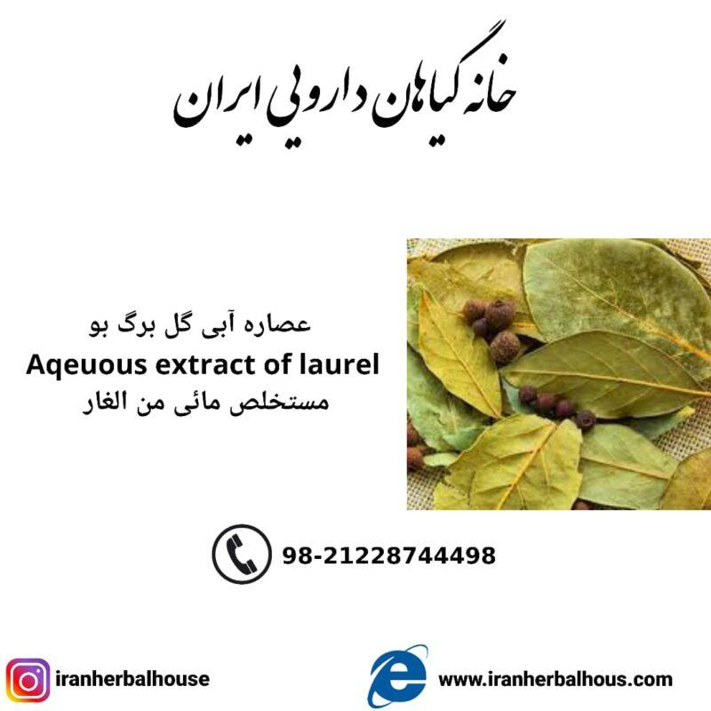 Aqeuous Extract of laurel