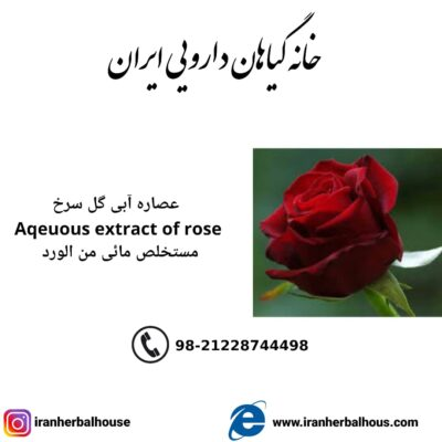 Aqeuous Extract of rose