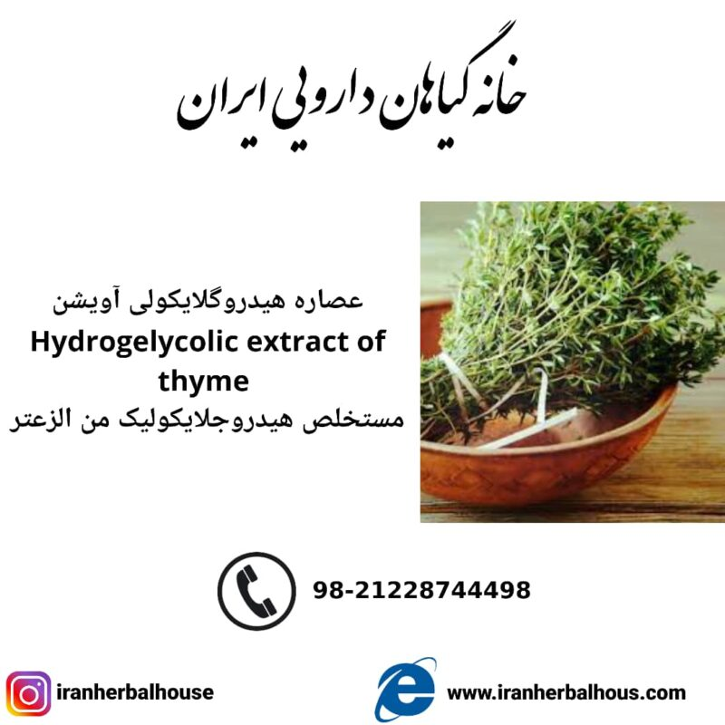 Hydrogelycolic Extract of thyme