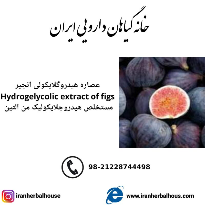 Hydrogelycolic Extract of figs
