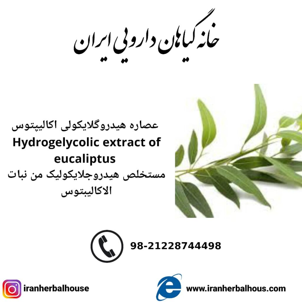 Hydrogelycolic Extract of eucaliptus