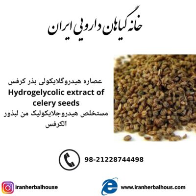 Hydrogelycolic Extract of celery seeds