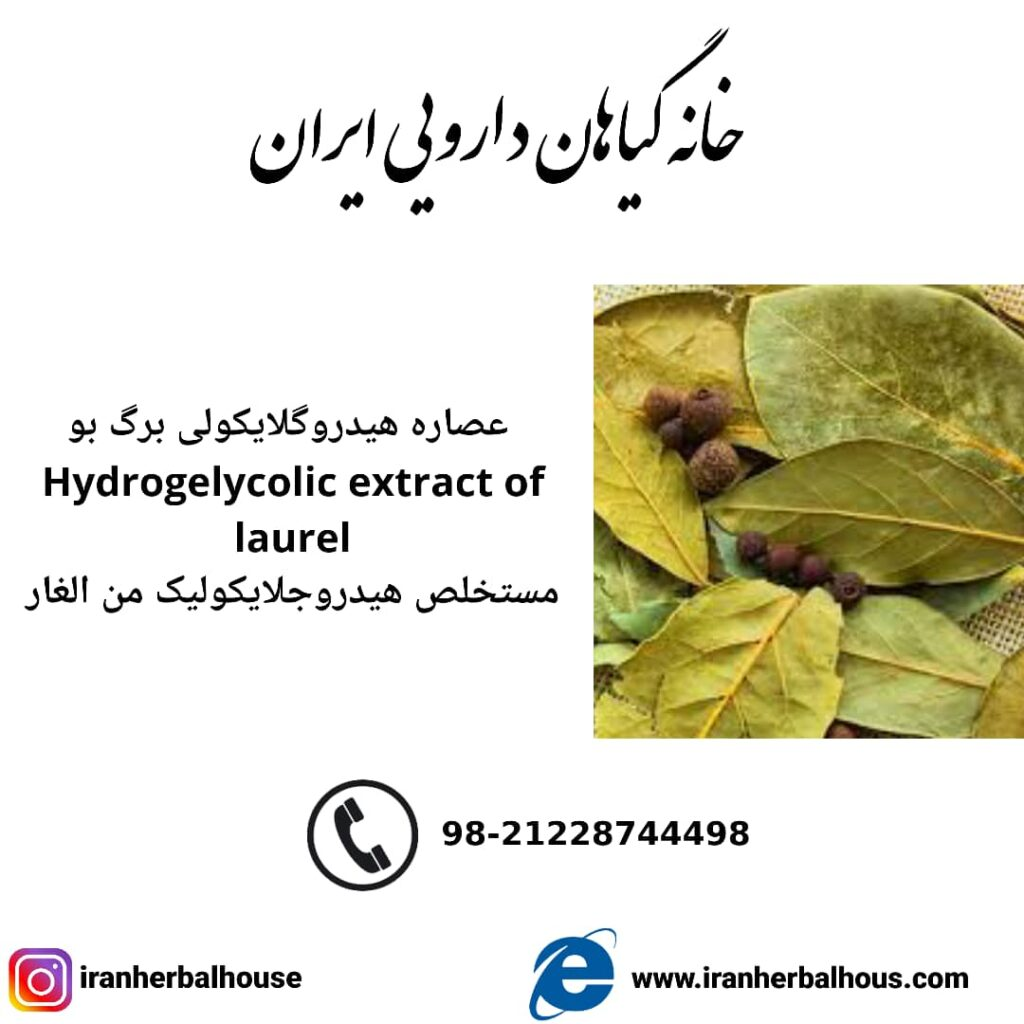 Hydrogelycolic Extract of laurel