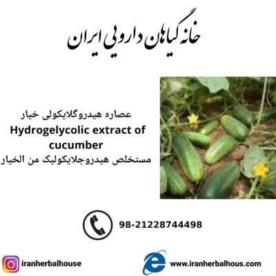 Hydrogelycolic Extract of cucumber