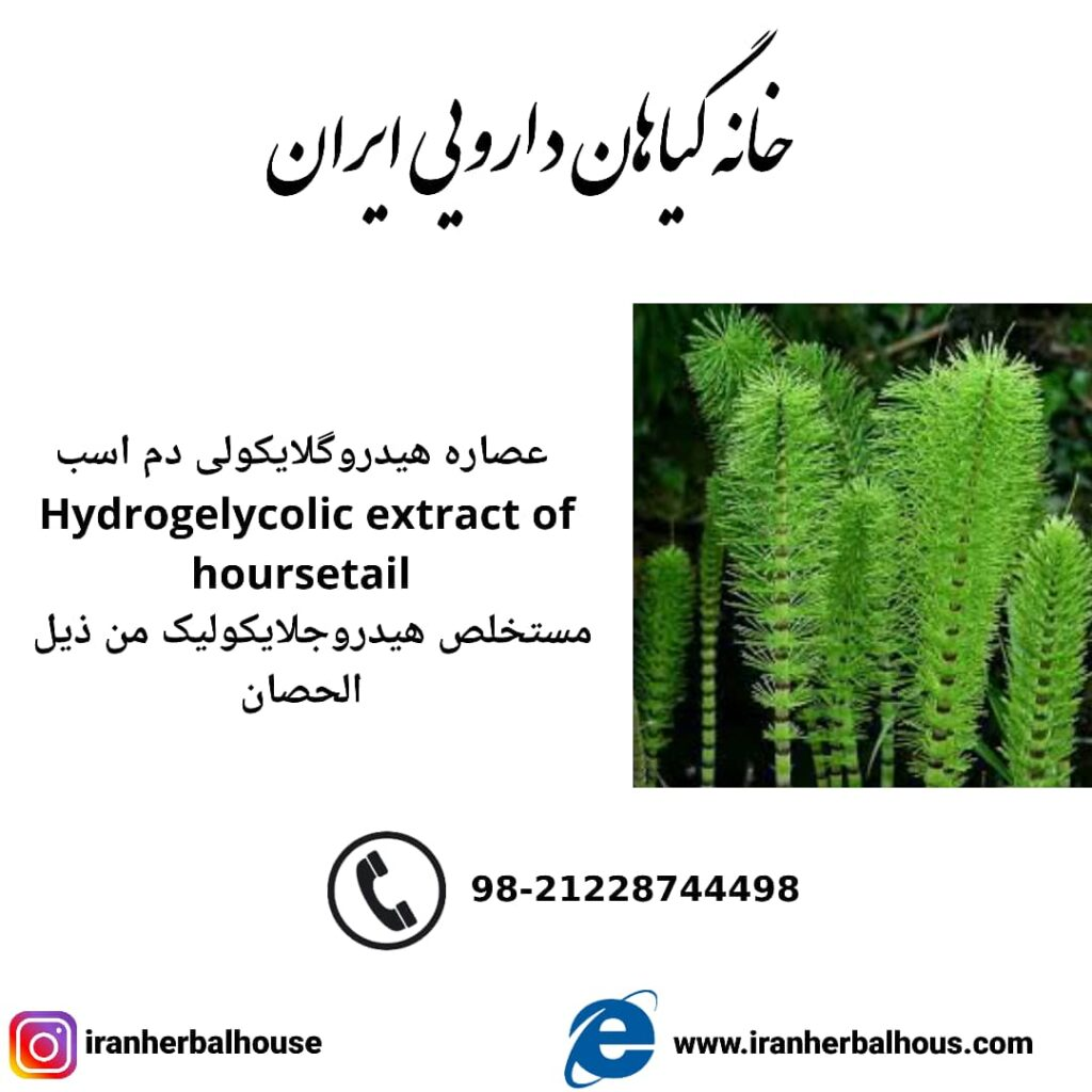 Hydrogelycolic Extract of horsetail