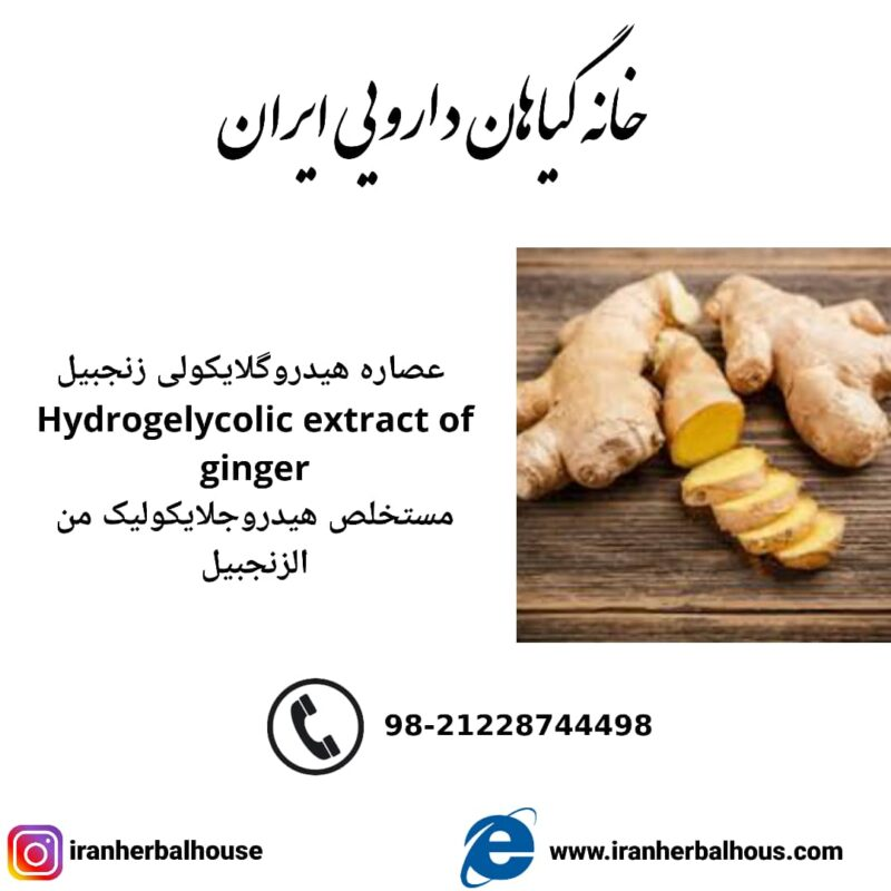 Hydrogelycolic Extract of ginger