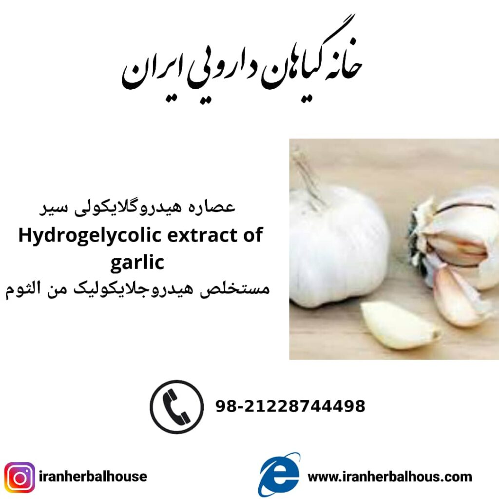 Hydrogelycolic Extract of garlic