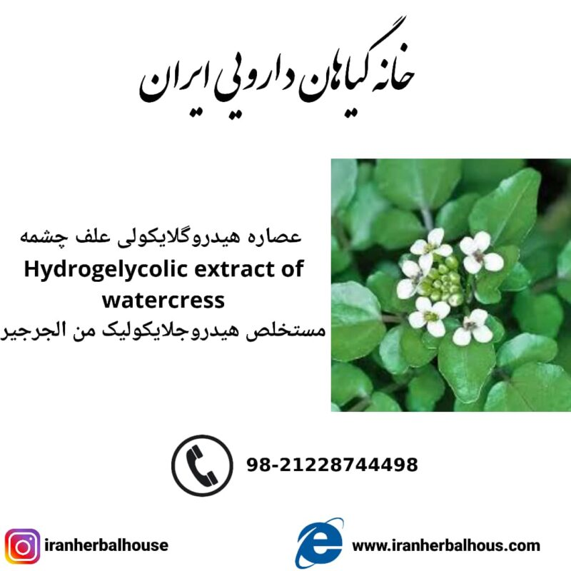 Hydrogelycolic Extract of watercress
