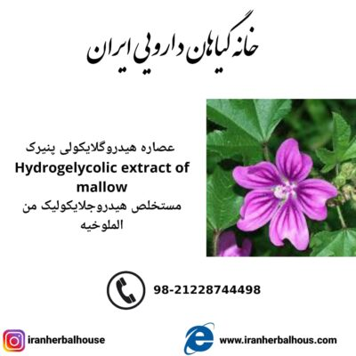 Hydrogelycolic Extract of mallow
