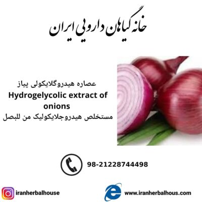Hydrogelycolic Extract of onion