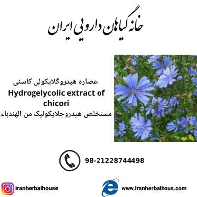 Hydrogelycolic Extract of chicori
