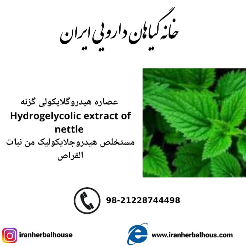 Hydrogelycolic Extract of nettle