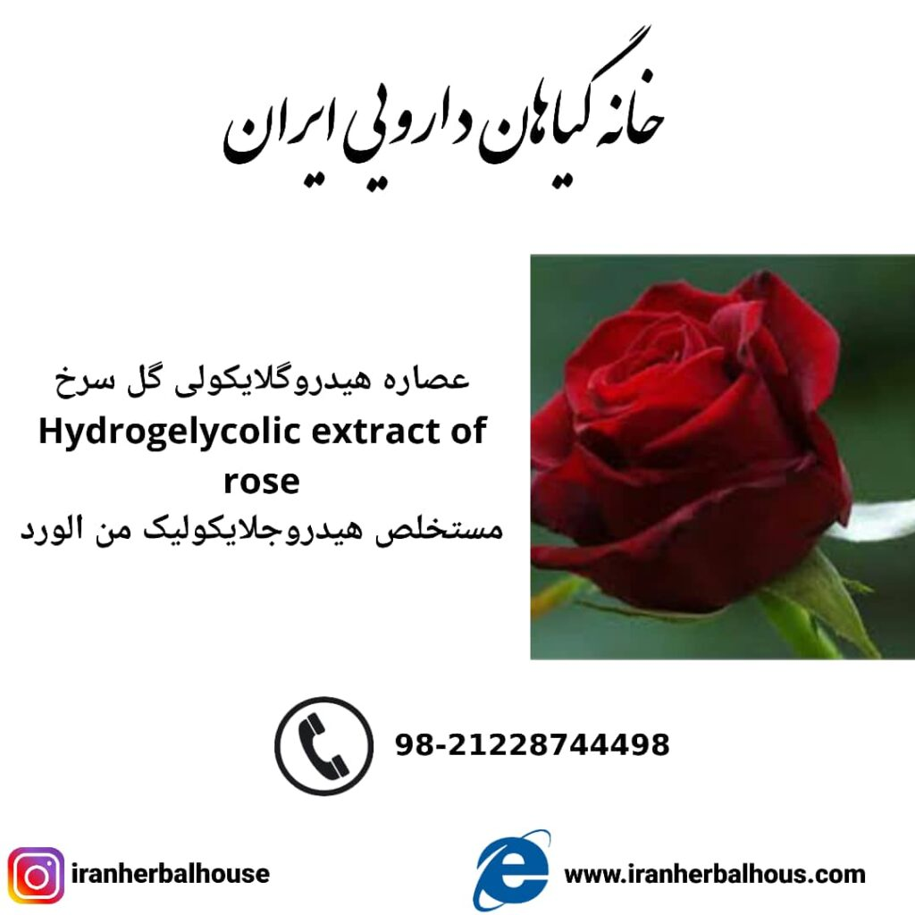 Hydrogelycolic Extract of rose