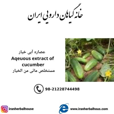 Aqeuous Extract of cucumber