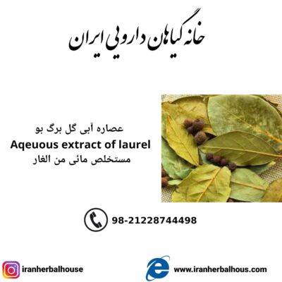 Aqeuous Extract of laurel