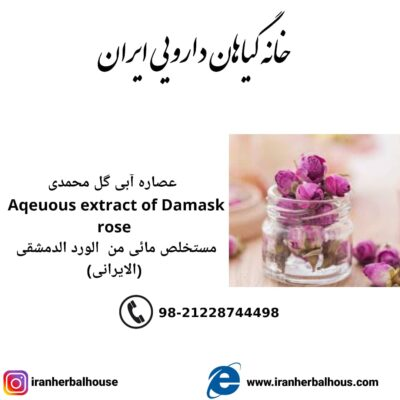 Aqeuous Extract of damask rose